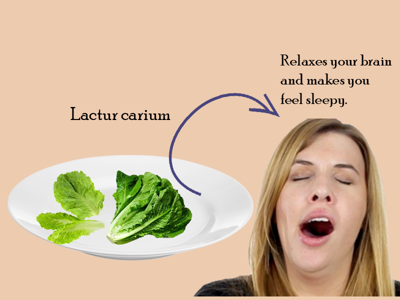 Lettuce Helps you to sleep better since it is one among the most sought after greens